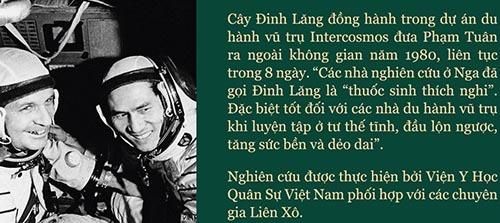 dong-hanh-cung-pham-tuan