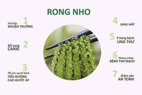 3-rong-nho-bien-yukibudo-co-tac-dung-gi-co-nen-dung-khong