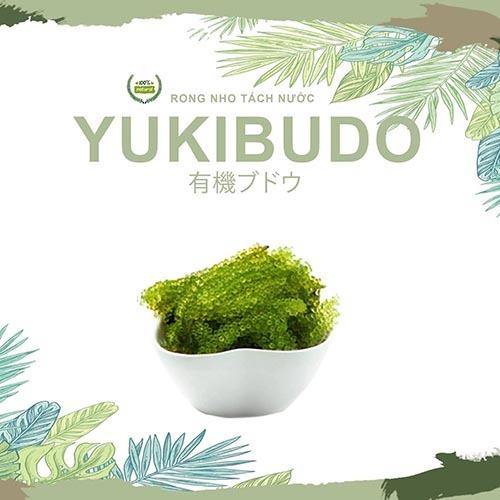 4-rong-nho-yukibudo-co-may-loai