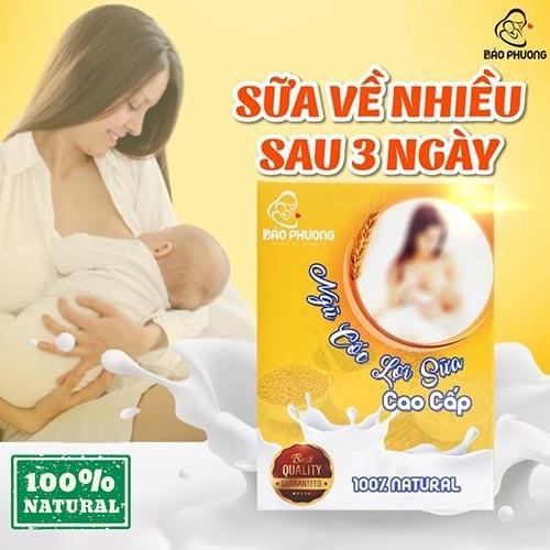 5-5-ngu-coc-loi-sua-bao-phuong(1)