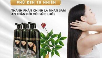 10-dau-goi-phu-bac-sin-hair-chinh-hang-gia-bao-nhieu